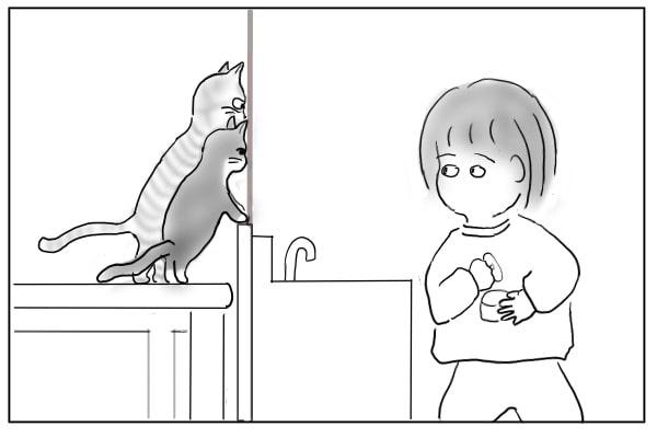 期待する猫たち