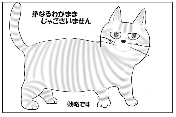 缶詰大好きな猫