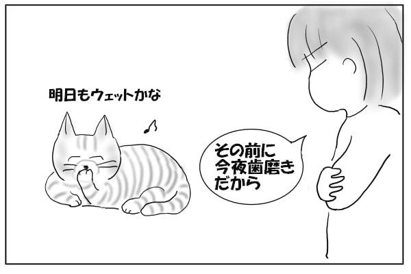 満足そうな猫