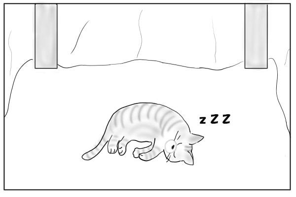コタツの中で寝てる猫