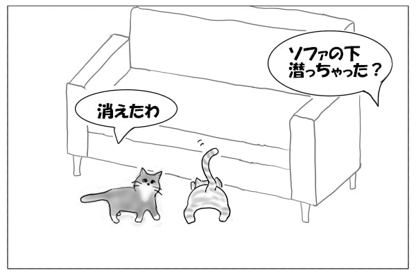 ねずみを探す猫