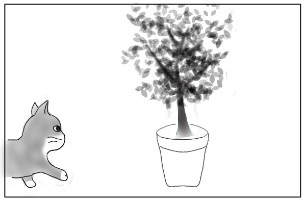 猫と植木鉢