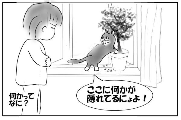 発掘する猫