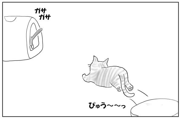 飛んでいく猫