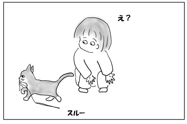 スルーする猫