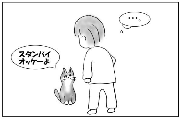 スタンバイする猫