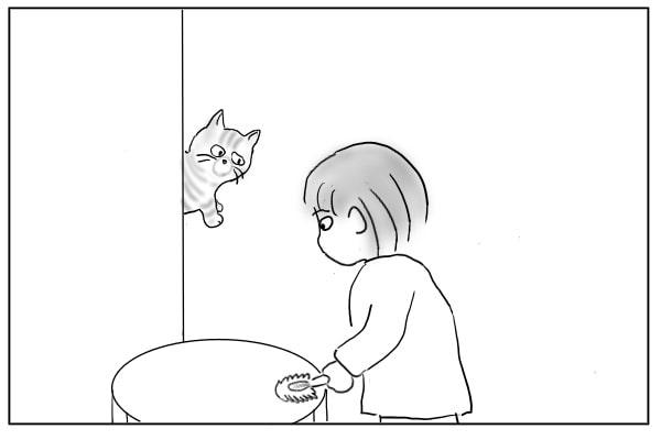 じっと見つめる猫