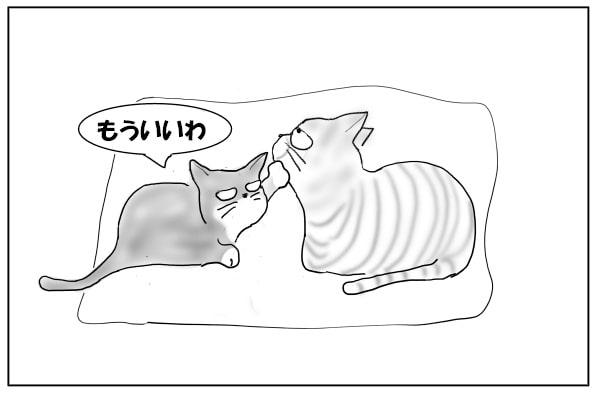 やめてほしい猫