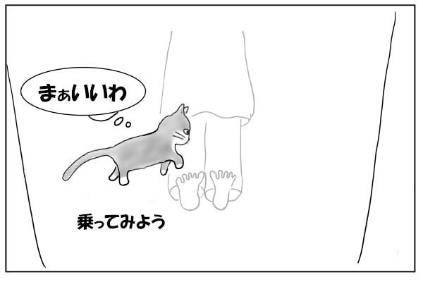 足に乗る猫