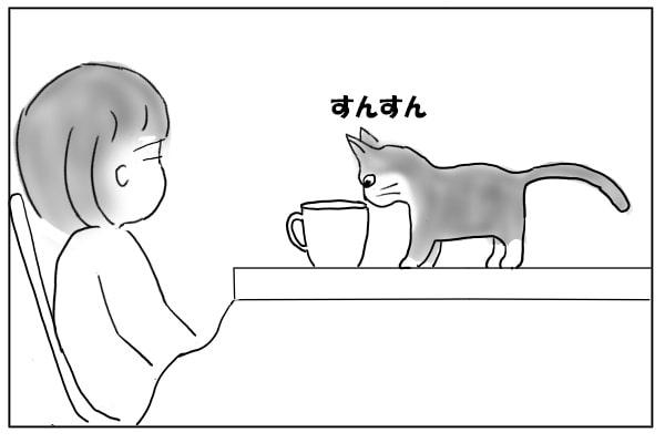 こたつに乗る猫