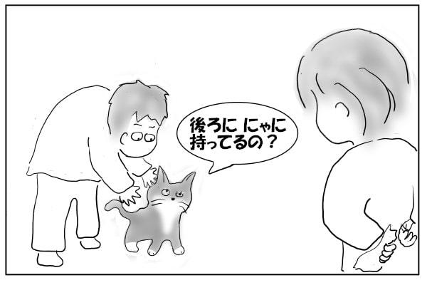猫を抱き上げる