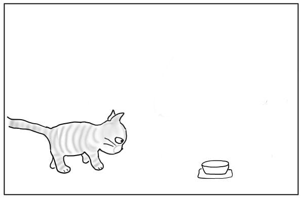 ボウルに近づく猫