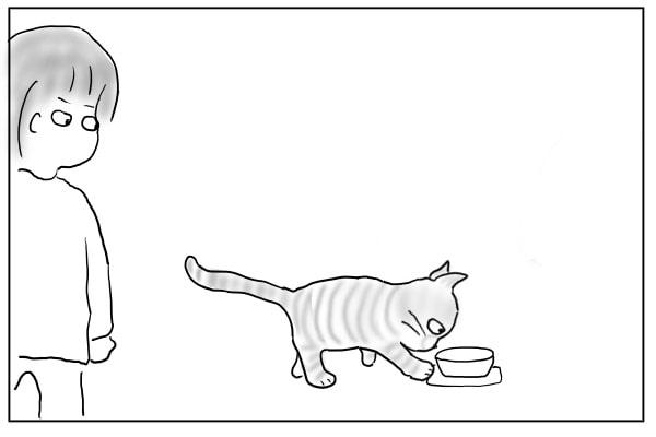 タオルを触る猫