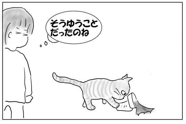 ボウルをひっくり返す猫