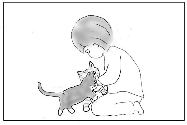 取り合う猫