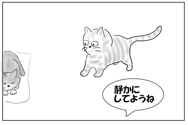 見守る人と猫