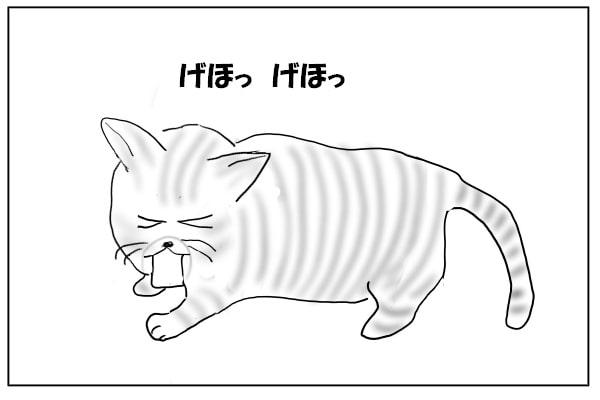 咳き込む猫