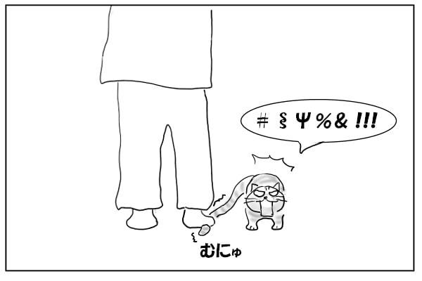 尻尾を踏まれた猫