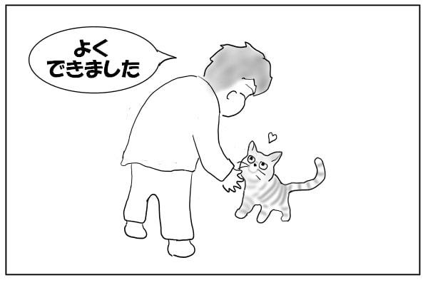 猫をほめる