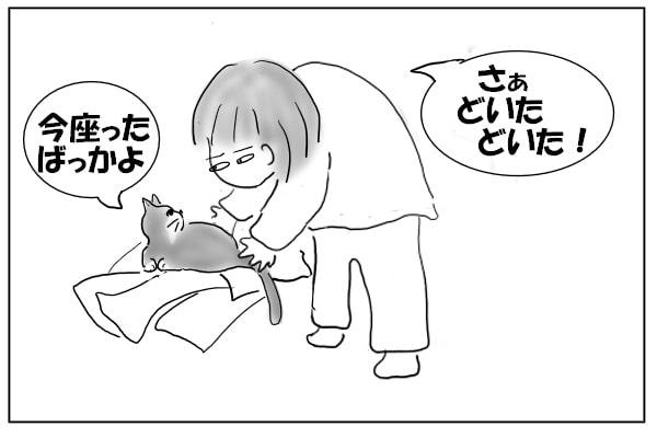 猫をどかす人