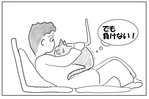 負けたくない猫