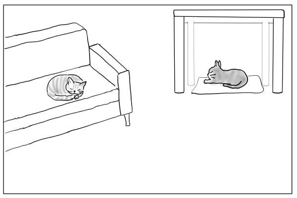 ひと眠りする猫