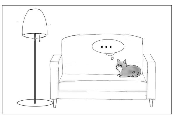 ルームライトを見上げる猫