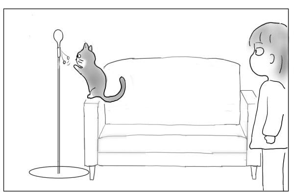 紐が気になる猫