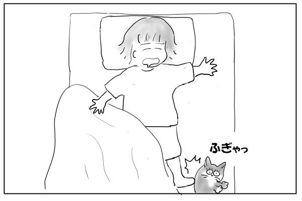 蹴とばされる猫