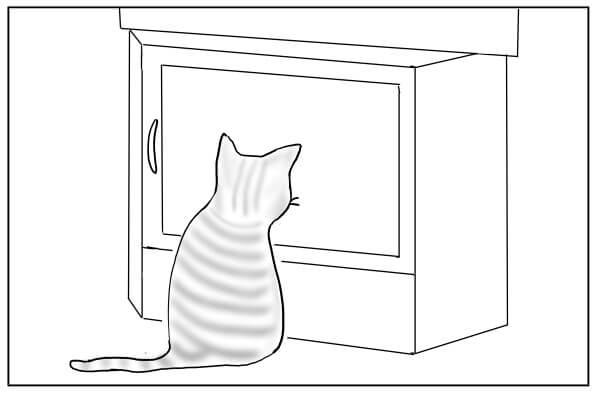 じっとのぞく猫
