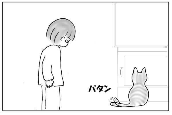 しっぽで答える猫