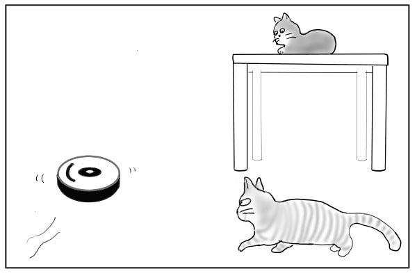 ルンバに近づく猫