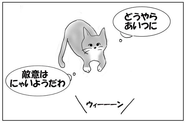 りこうな猫