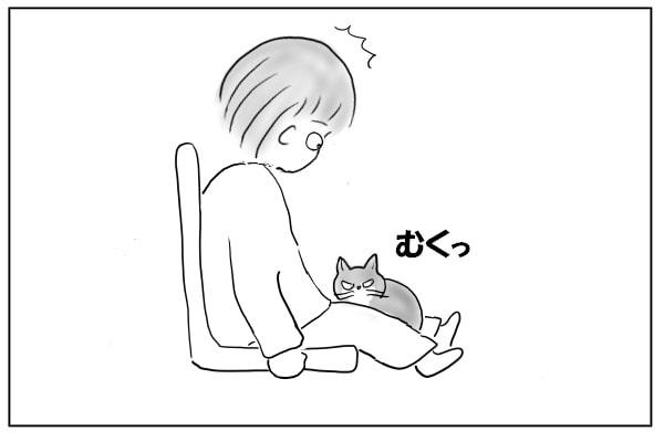 むくっと起きた猫