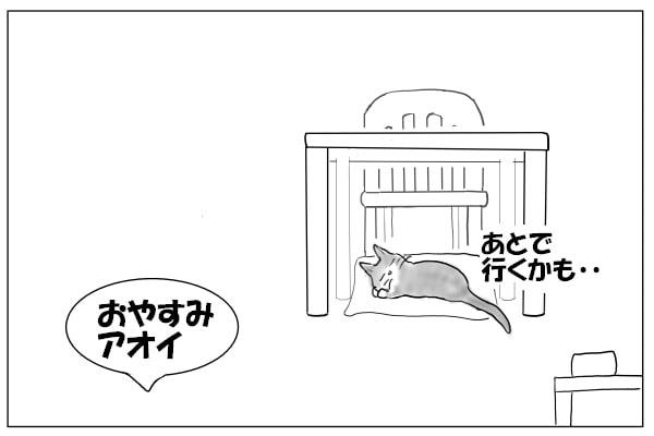 テーブルと猫
