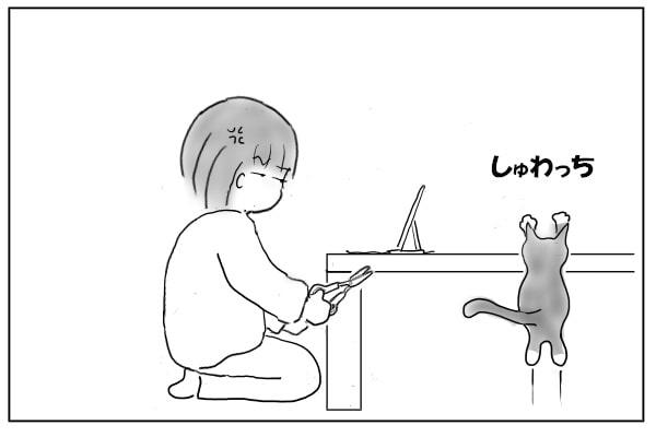 また乗る猫