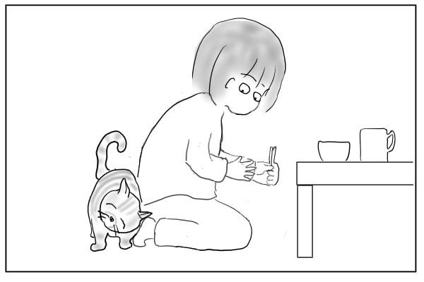 猫の頭突き