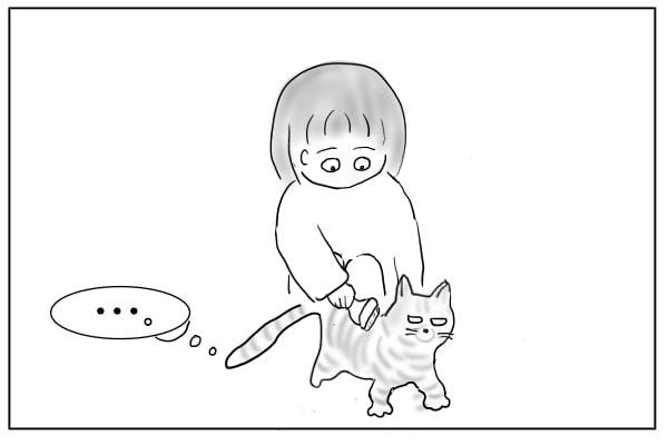 気が乗らない猫