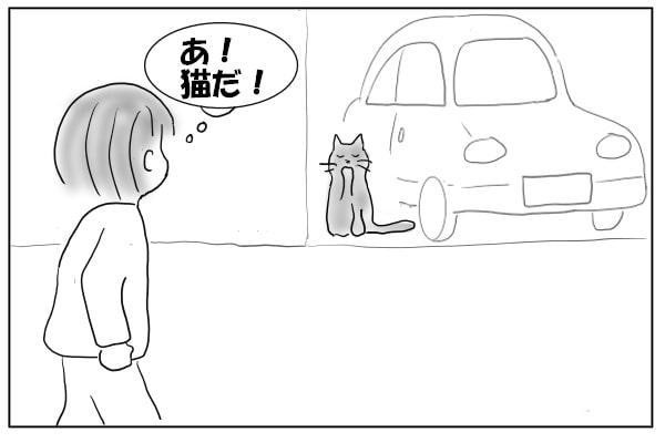 ノラ猫に足を止める