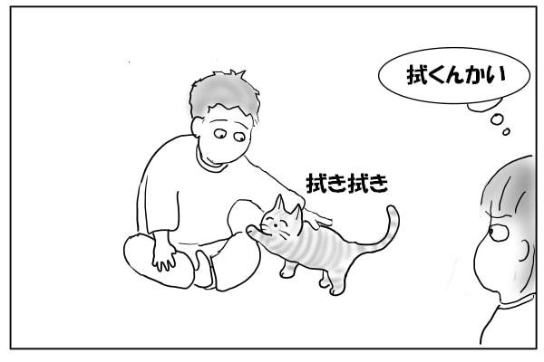 猫で手を拭く