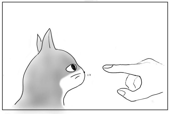 指先に鼻を近づける猫
