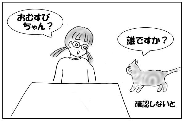 人に近づく猫