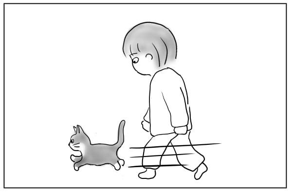 追い越す猫