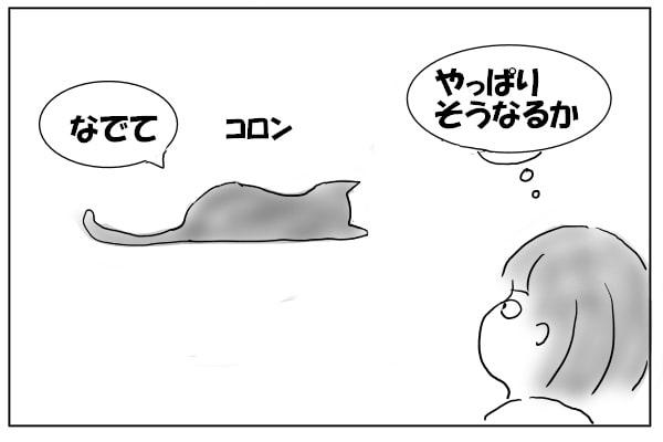 パタンと倒れる猫