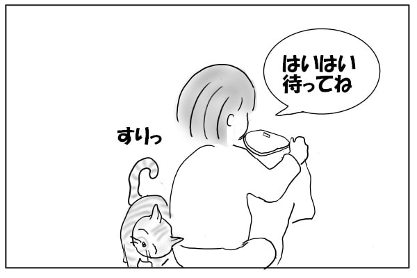 甘えたい猫