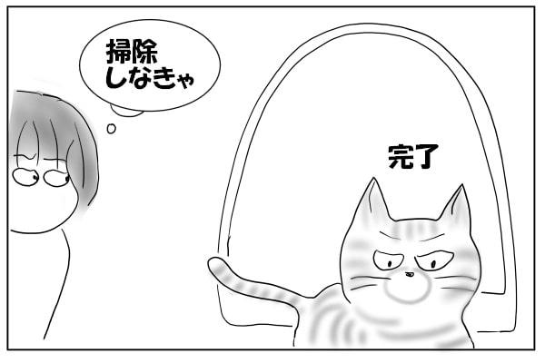 トイレから出た猫