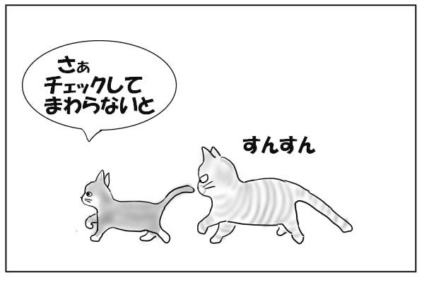 匂いを嗅ぎつづける猫