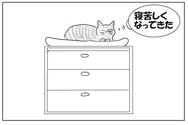 むっくりと起きた猫