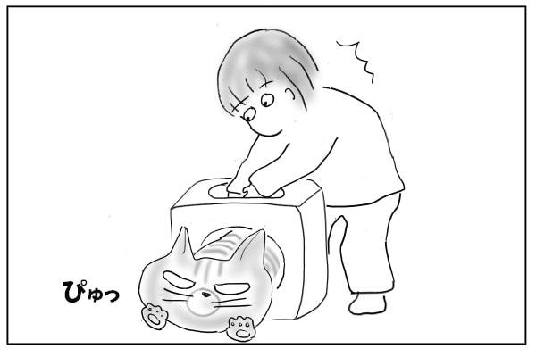 逃走する猫