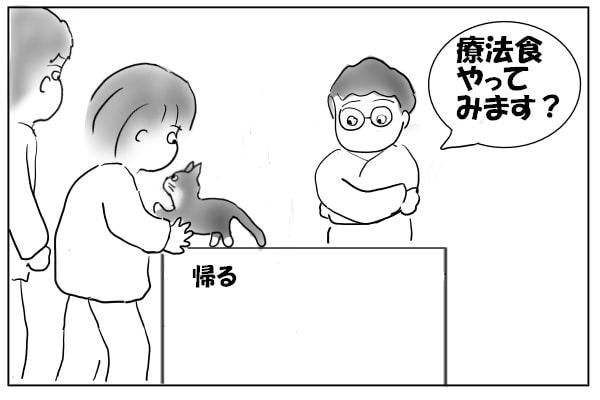 先生の提案